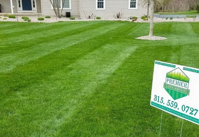 Best Lawn Care Near Me