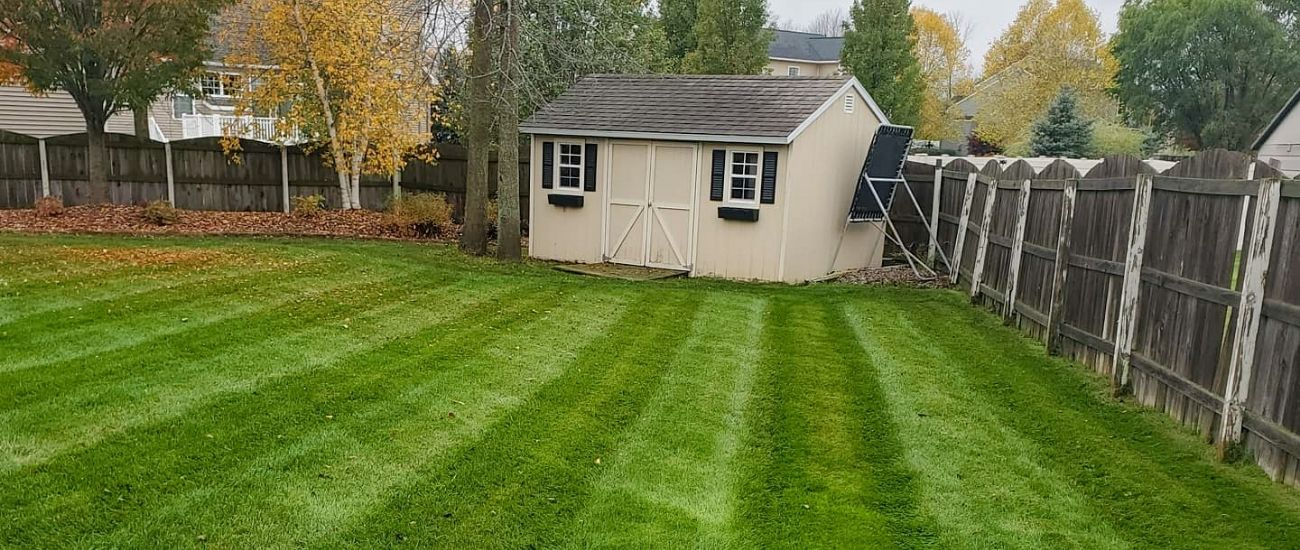 Best Lawn in Cicero NY