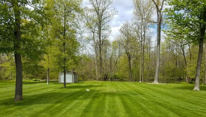 A beautiful residential lawn that has been professionally mowed.