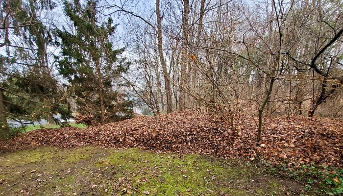 A residential property with a large pile of leaves that have been gathered for removal.