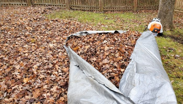 A backyard with a backpack blower in the background and a tarp filled with leaves that have been cleared in the Syracuse area.