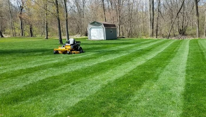 A lush green customer lawn with a professional grade lawn mower.